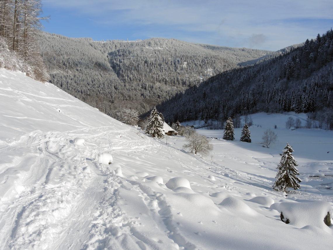 Ski tour Stübenwasen