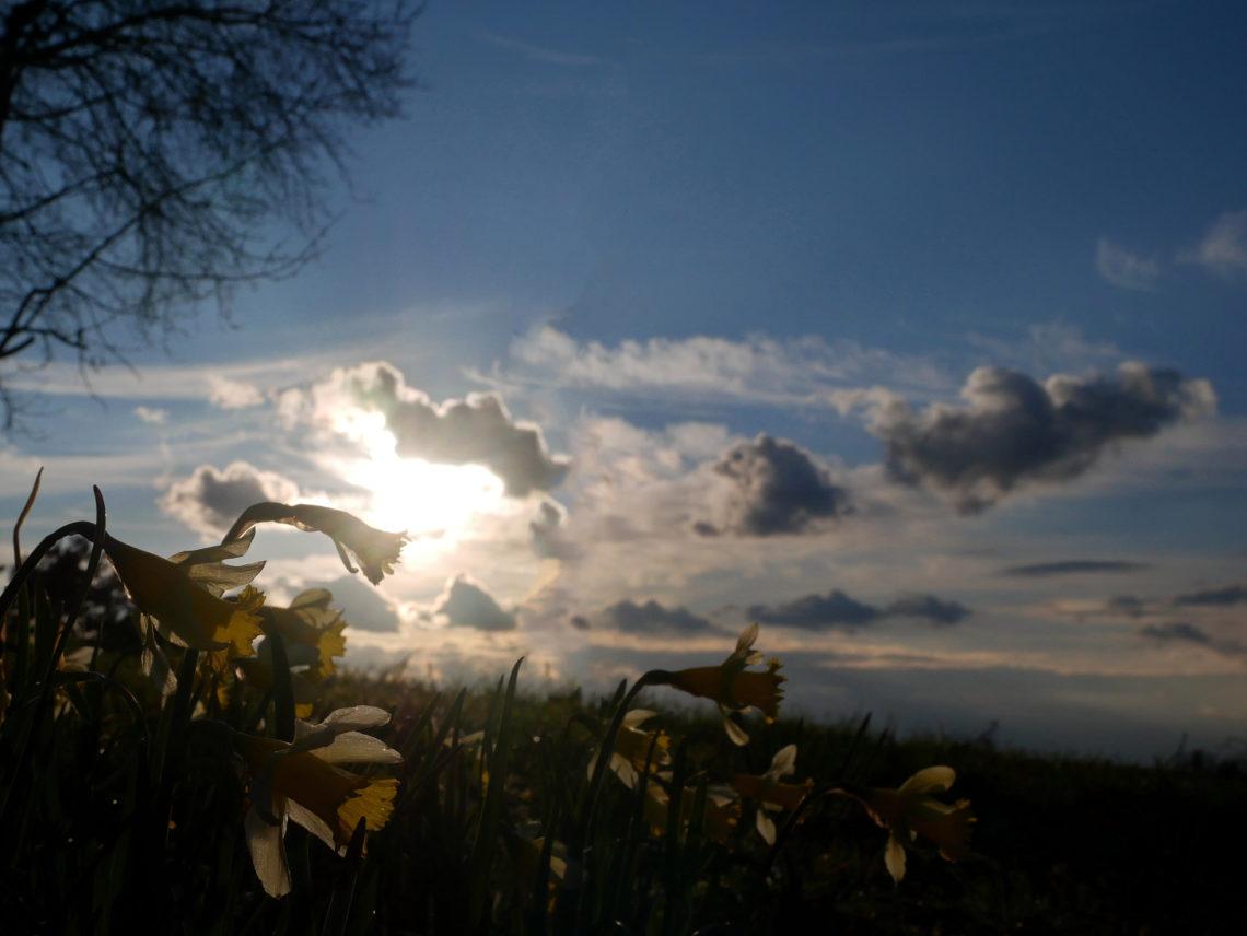last light over Seepark